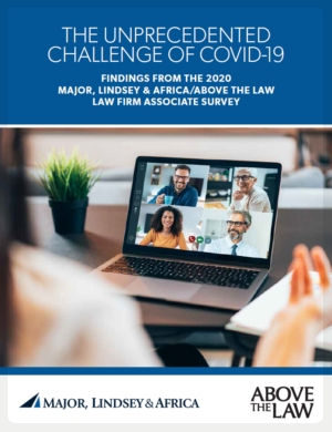MLA Report Cover